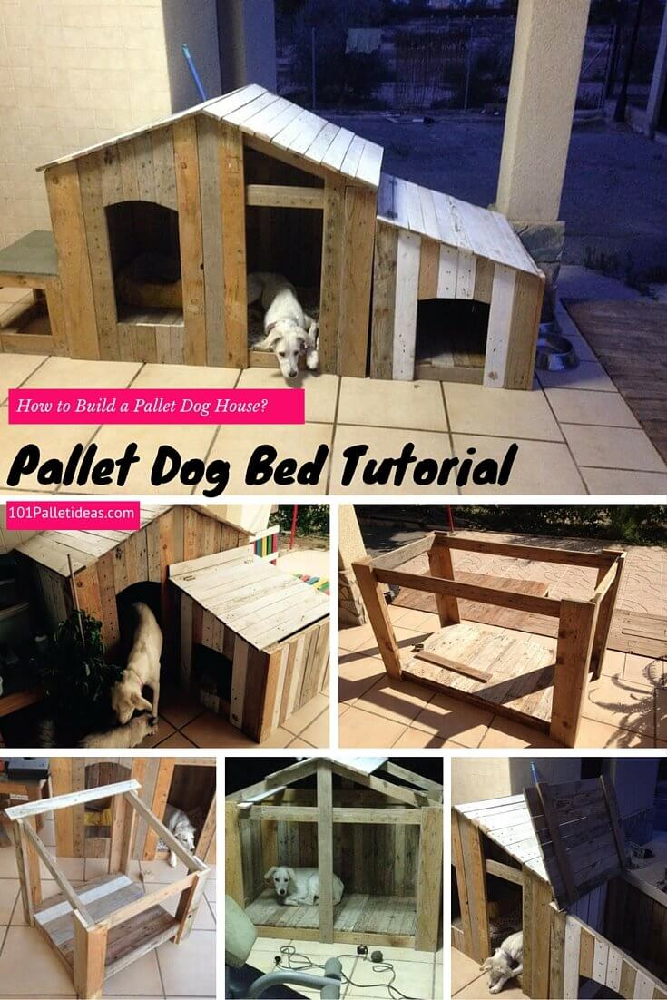 How to build a pallet dog house diy for How to build my house
