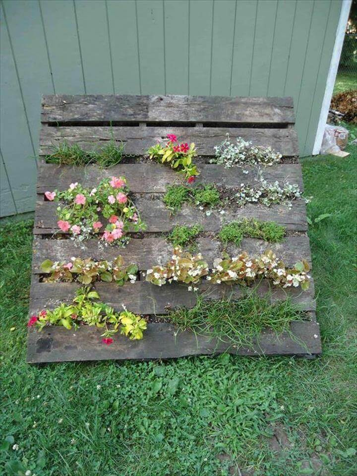... or herb planter that will work like a charm for your green space