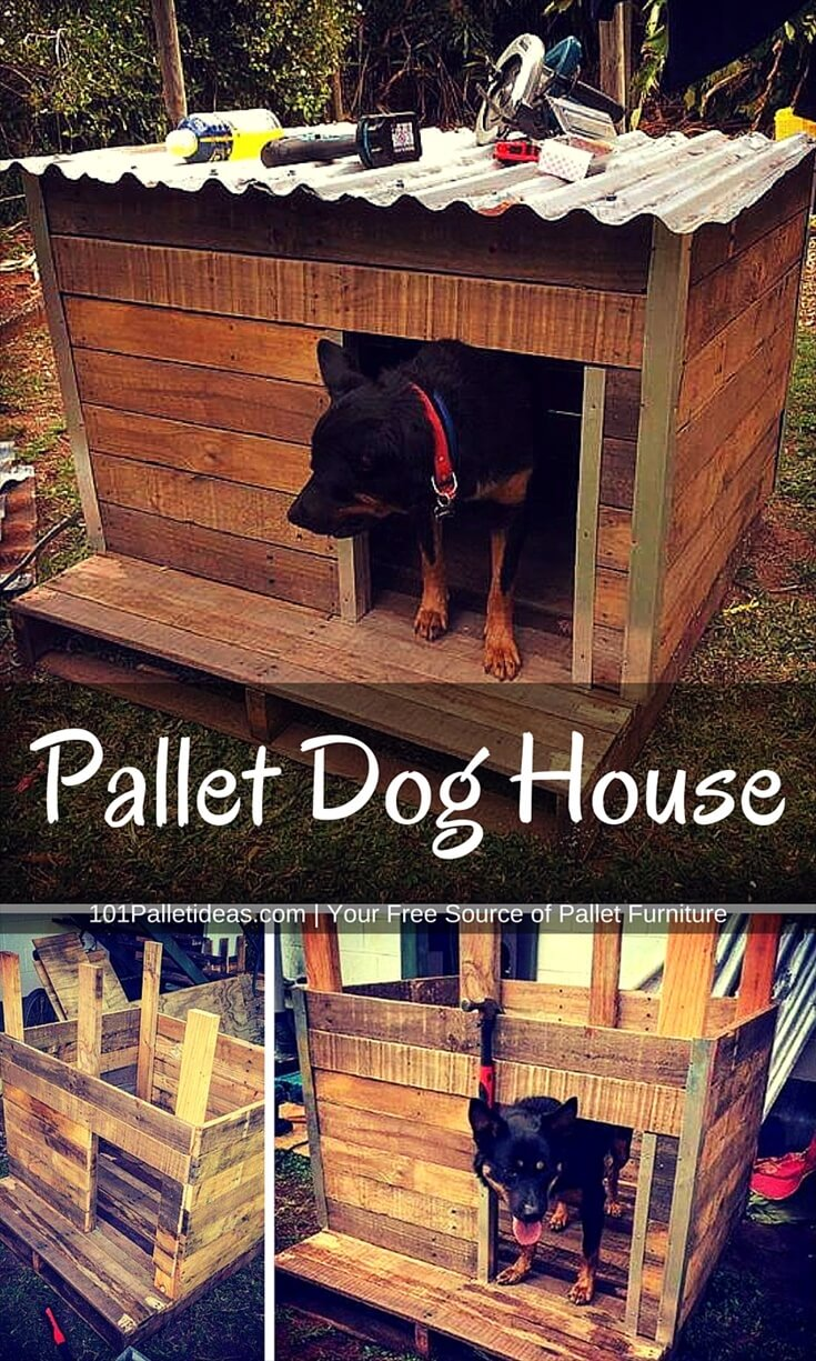 Rustic pallet dog house for Build a house online free