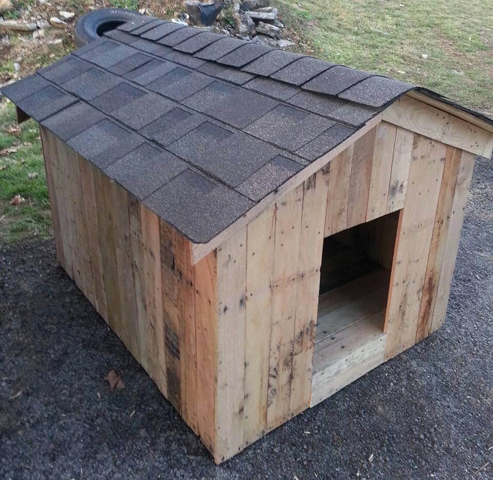 handmade pallet dog kennel