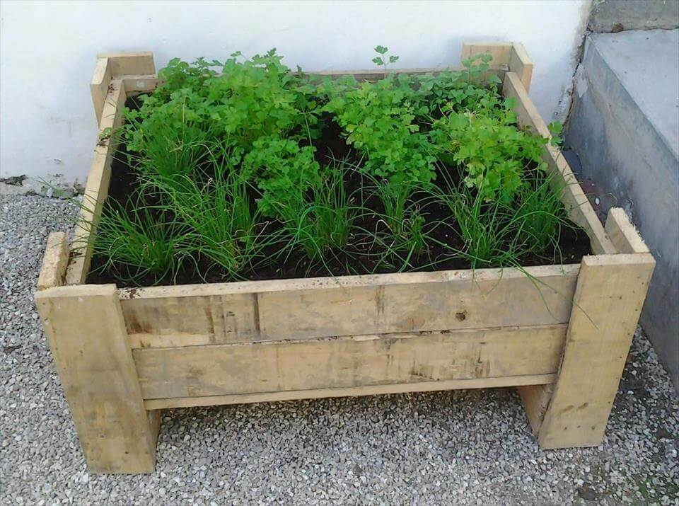 planter made of pallets