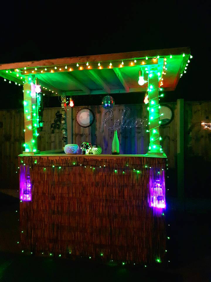 pallet bar with green and purple lights