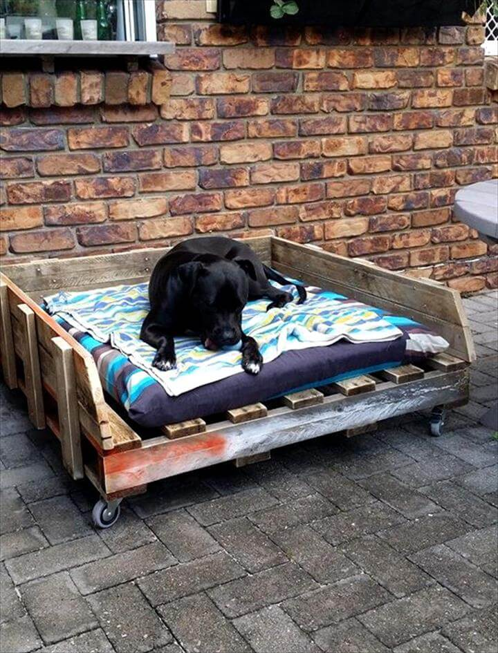 40 diy pallet dog bed ideas don 39 t know which i love more for Pallet wall on wheels