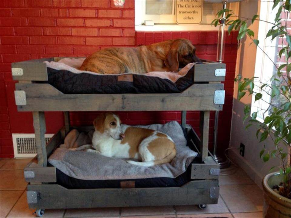 rustic grey pallet dog bunk bed