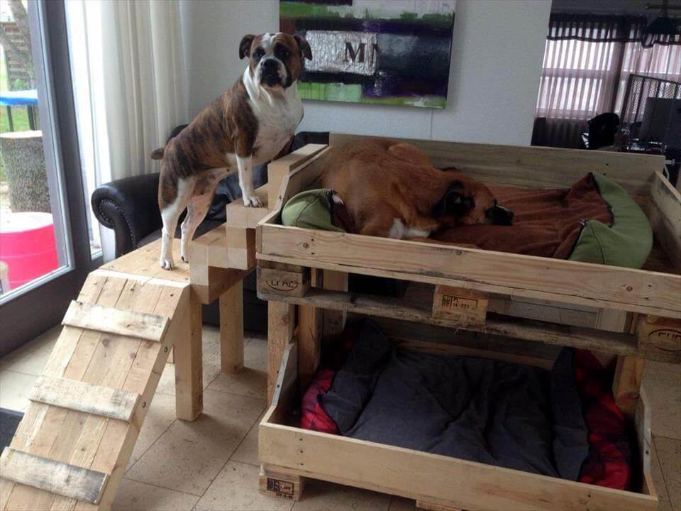 pallet bunk dog bed with stairs