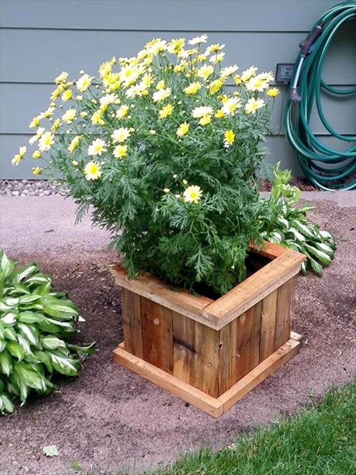 Triangular Raised Flower Bed On Large Garden Lawn Stock: Upcycled Pallet Planter Designs