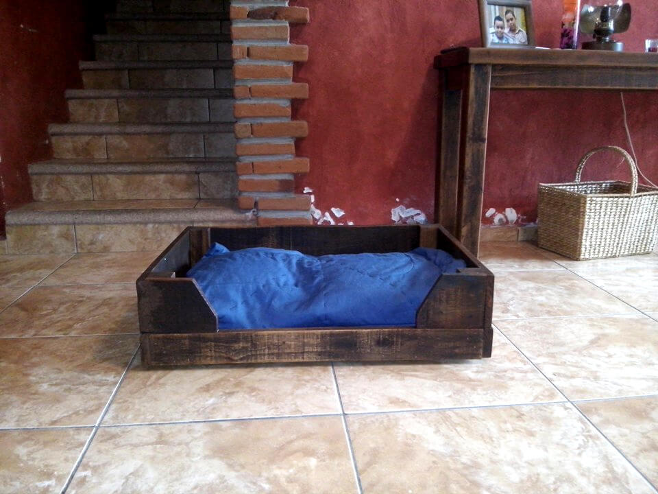 reclaimed wooden pallet blue cushioned pallet pet bed