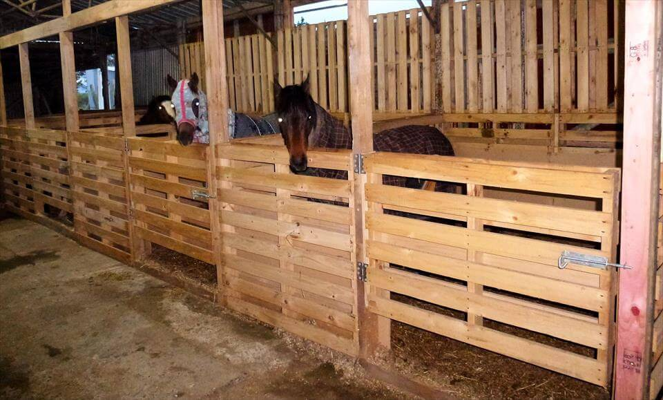 Pallet horse stable shelter for Building a horse stable