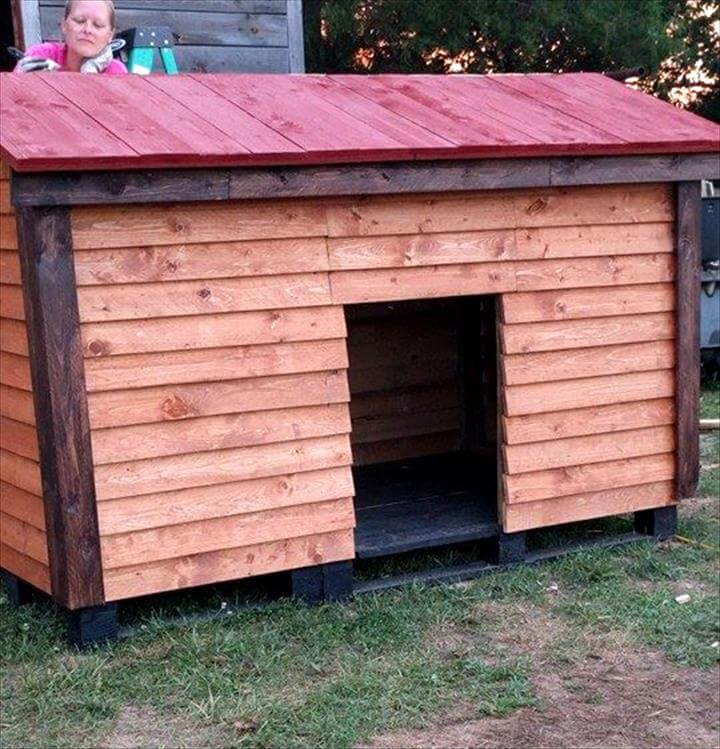 repurposed wooden pallet dog house