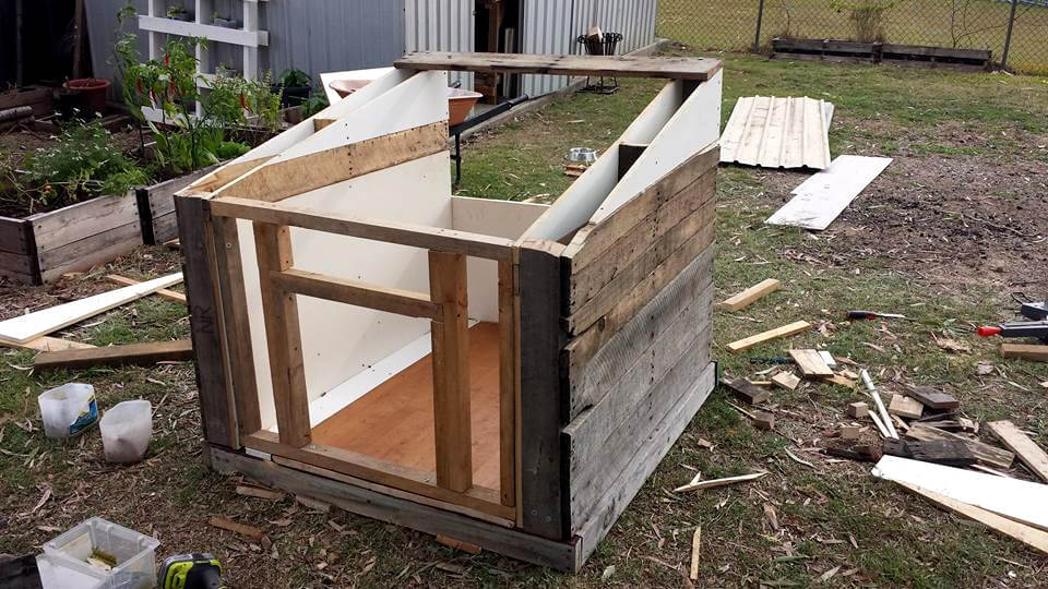 building a dog kennel out of pallets