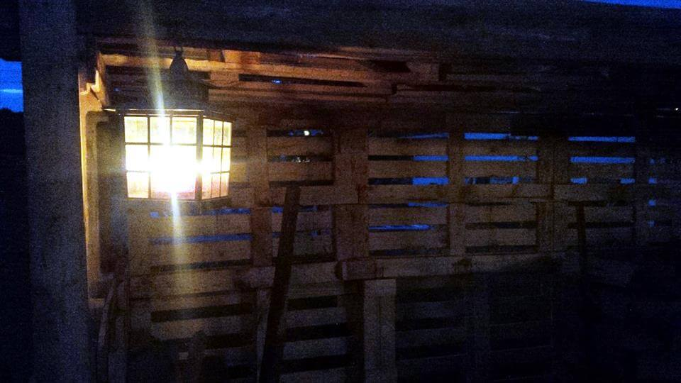 study wooden palelt firewood shed