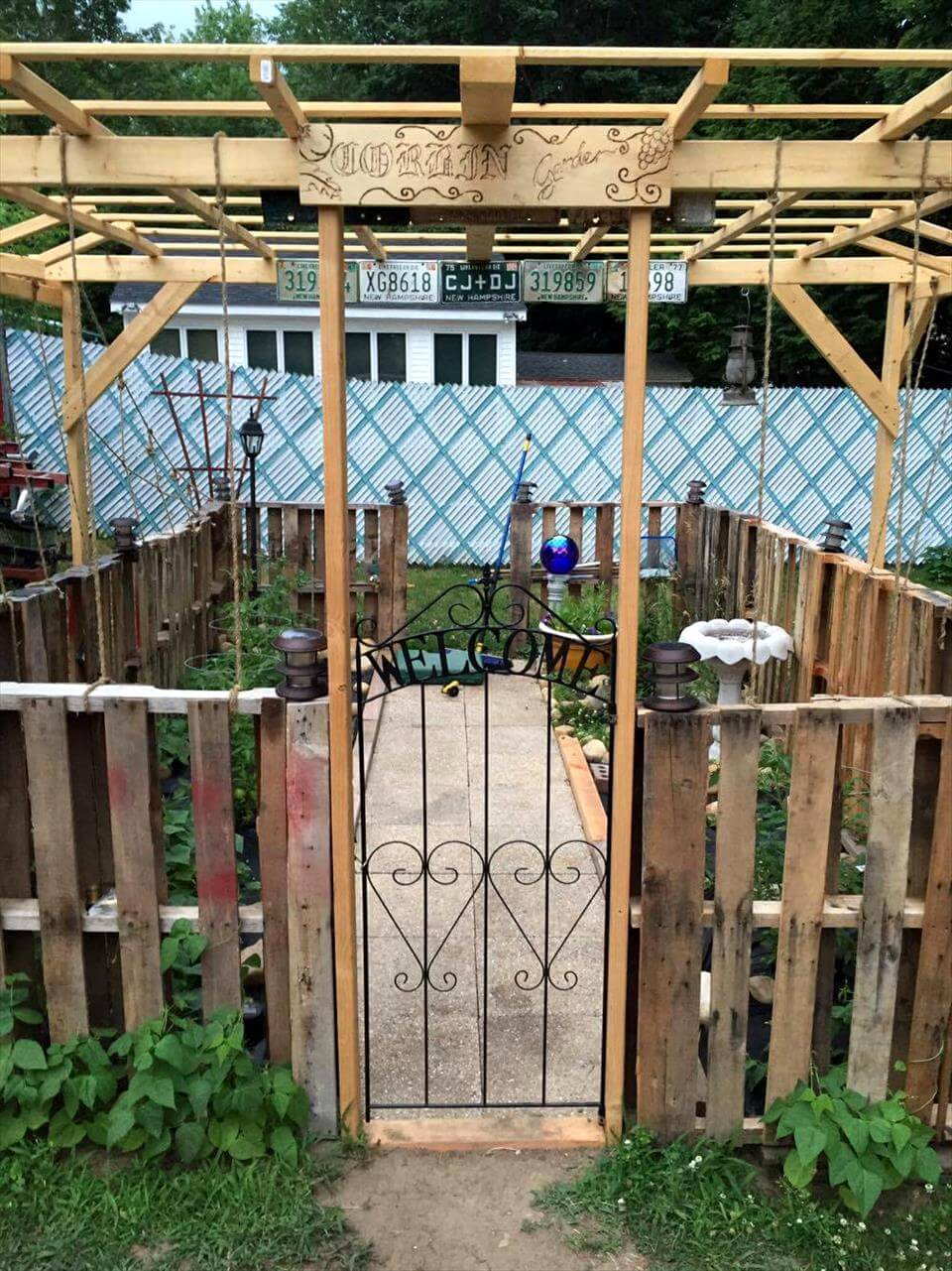 low-cost pallet garden with overhead trellis