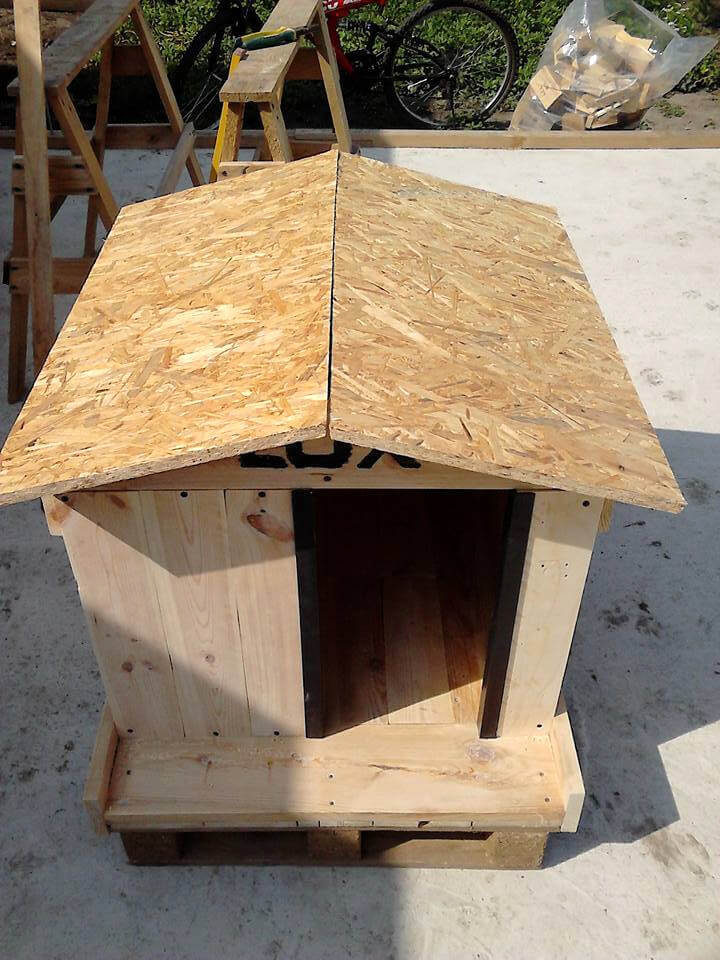 How to build a cool pallet dog house 101 pallet ideas for Building a house ideas