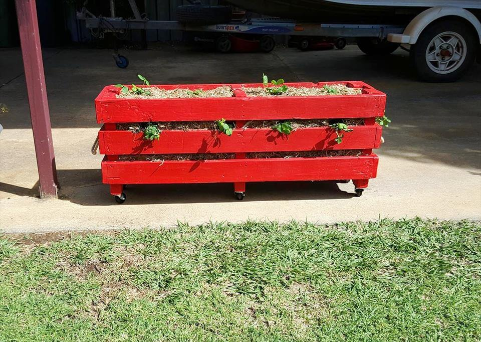 reclaimed pallet strawberry planter box