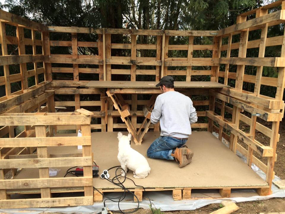 making of a wooden pallet shed